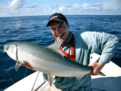 Seychelles: milkfish mania ...Chanos Chanos, the movie