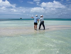Fantastic offer for Los Roques, Venezuela