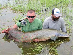 Arapaima - A client report from a trip to Pirarucu